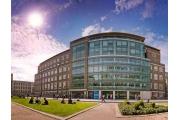 CEG Подготовка к лучшим университетам Лондона